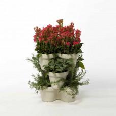 Tripla virágcserép My Mood